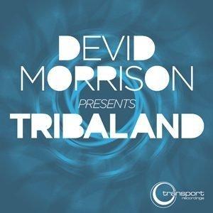 Devid Morrison - Tribaland