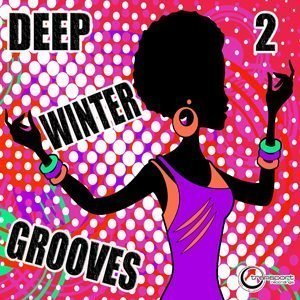 Deep Winter Grooves Vol. 2